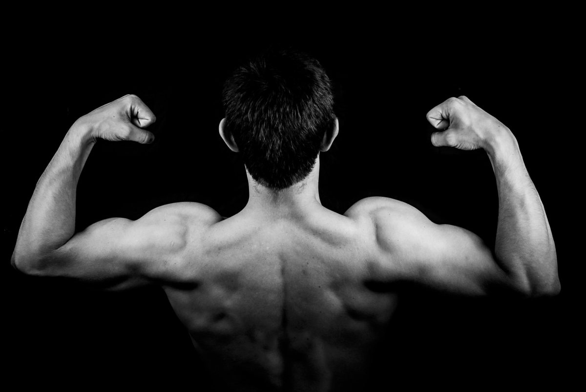 The Skinny Guy´s Guide To MuscleBuilding